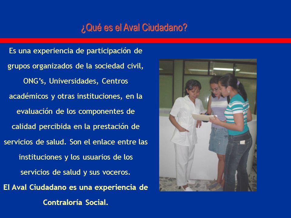 Es una experiencia de participación de grupos organizados de la sociedad civil, ONGs, Universidades, Centros académicos y otras instituciones, en la e