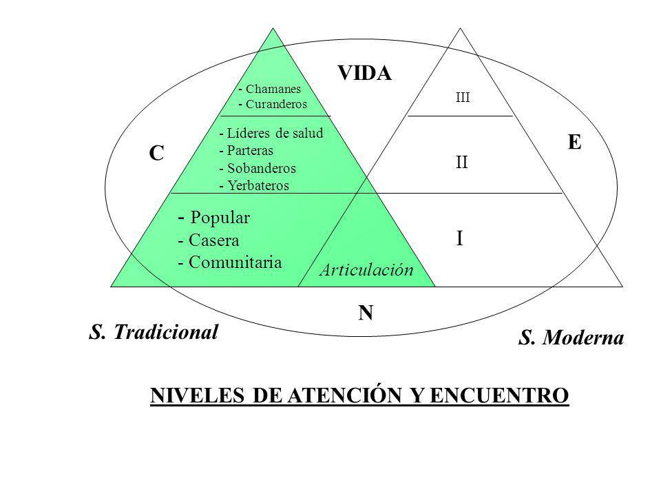 S.Tradicional S.