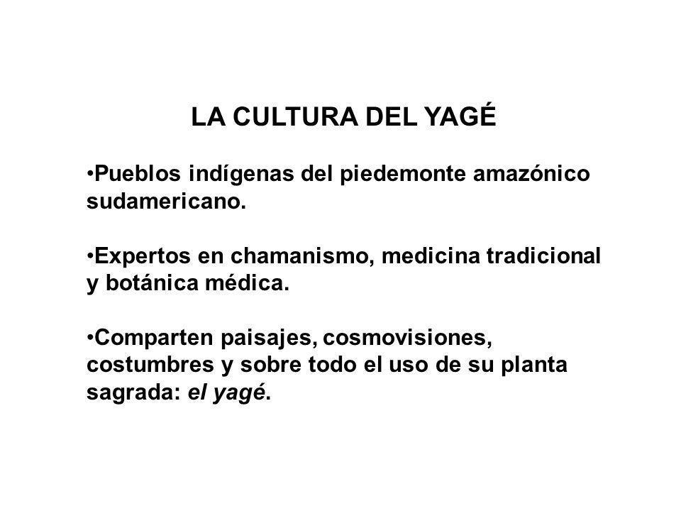 LA CULTURA DEL YAGÉ Pueblos indígenas del piedemonte amazónico sudamericano.