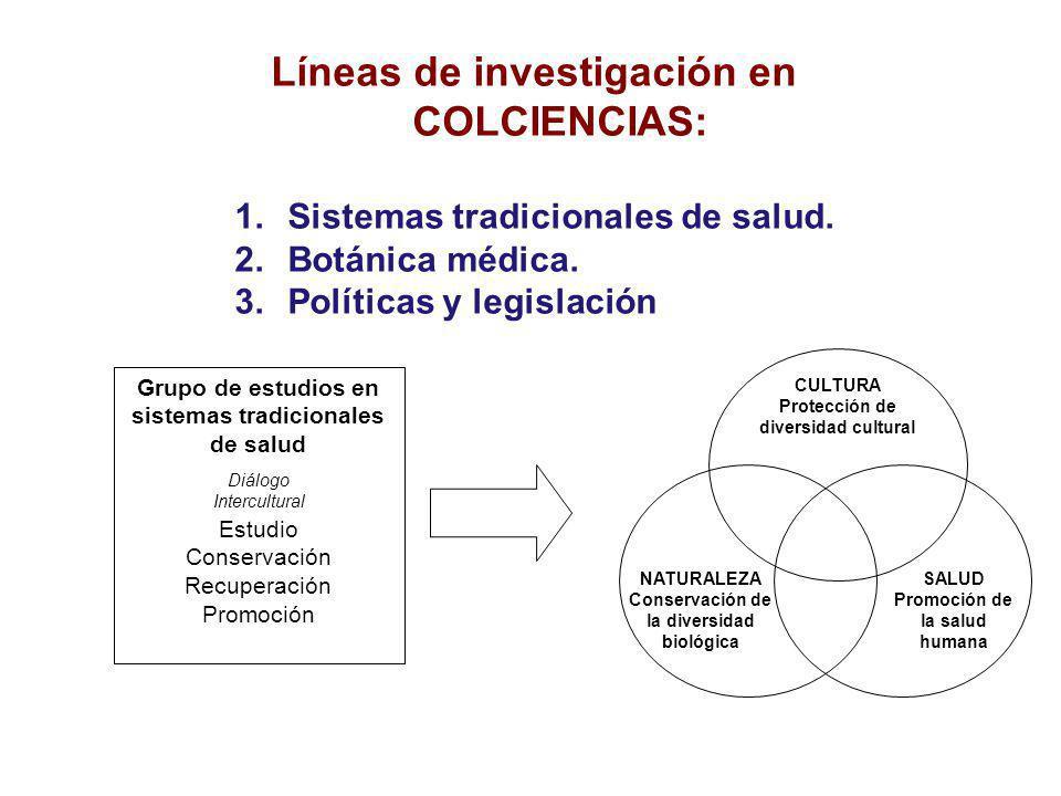 Grupo de Estudios en Sistemas Tradicionales de Salud Prestación de servicios de salud Proyectos de investigación Procesos académicos Programas comunitarios