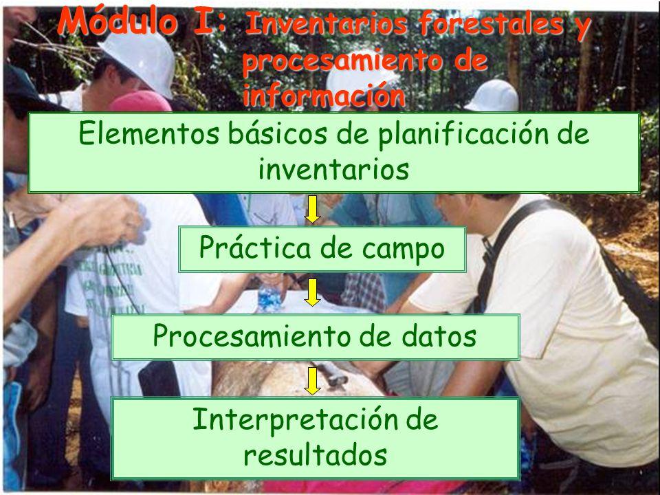 Módulo I: Inventarios forestales y procesamiento de información Elementos básicos de planificación de inventarios Práctica de campo Procesamiento de datos Interpretación de resultados
