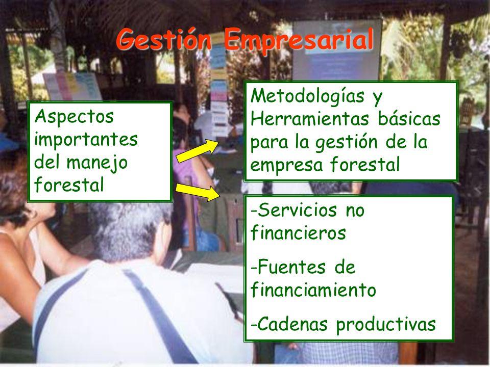 Gestión Empresarial Aspectos importantes del manejo forestal Metodologías y Herramientas básicas para la gestión de la empresa forestal -Servicios no financieros -Fuentes de financiamiento -Cadenas productivas