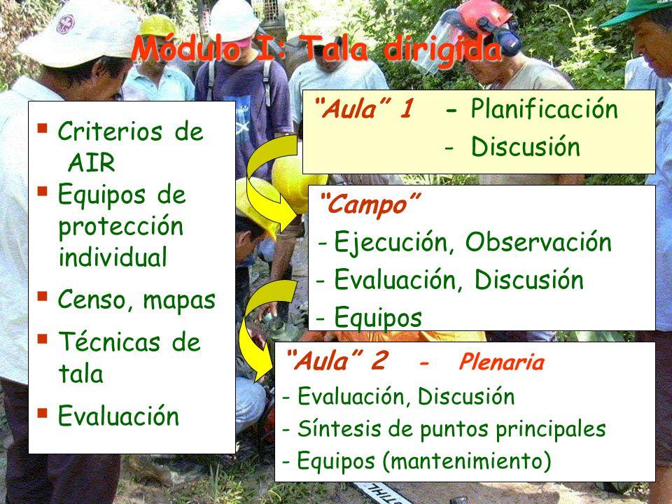 Aula 1- Planificación - Discusión Campo - Ejecución, Observación - Evaluación, Discusión - Equipos Aula 2 - Plenaria - Evaluación, Discusión - Síntesis de puntos principales - Equipos (mantenimiento) Criterios de AIR Equipos de protección individual Censo, mapas Técnicas de tala Evaluación Módulo I: Tala dirigida