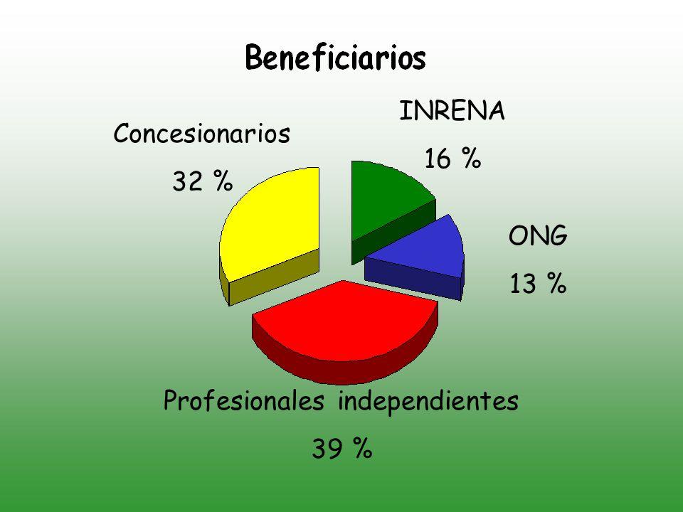 Concesionarios 32 % INRENA 16 % ONG 13 % Profesionales independientes 39 %