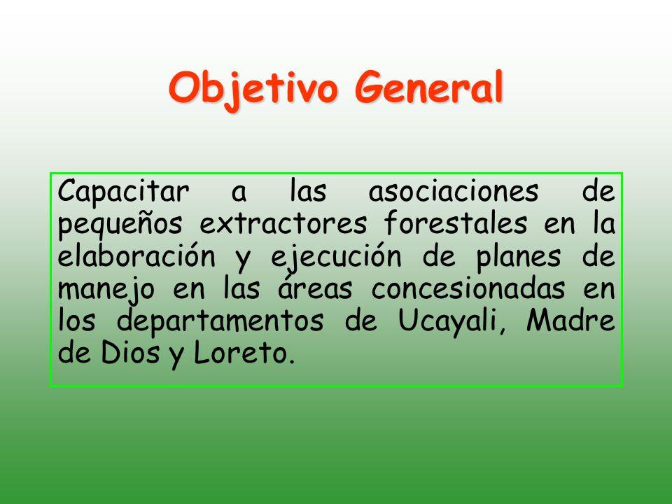 Capacitar a las asociaciones de pequeños extractores forestales en la elaboración y ejecución de planes de manejo en las áreas concesionadas en los departamentos de Ucayali, Madre de Dios y Loreto.