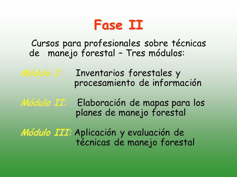 Fase II Cursos para profesionales sobre técnicas de manejo forestal – Tres módulos: Módulo I: Módulo I: Inventarios forestales y procesamiento de información Módulo II: Módulo II: Elaboración de mapas para los planes de manejo forestal Módulo III: Módulo III: Aplicación y evaluación de técnicas de manejo forestal