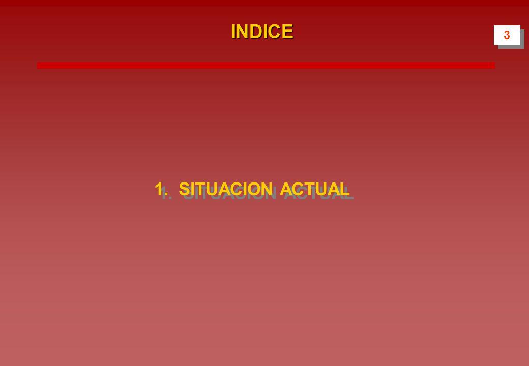 INDICE 1.SITUACION ACTUAL 3 3