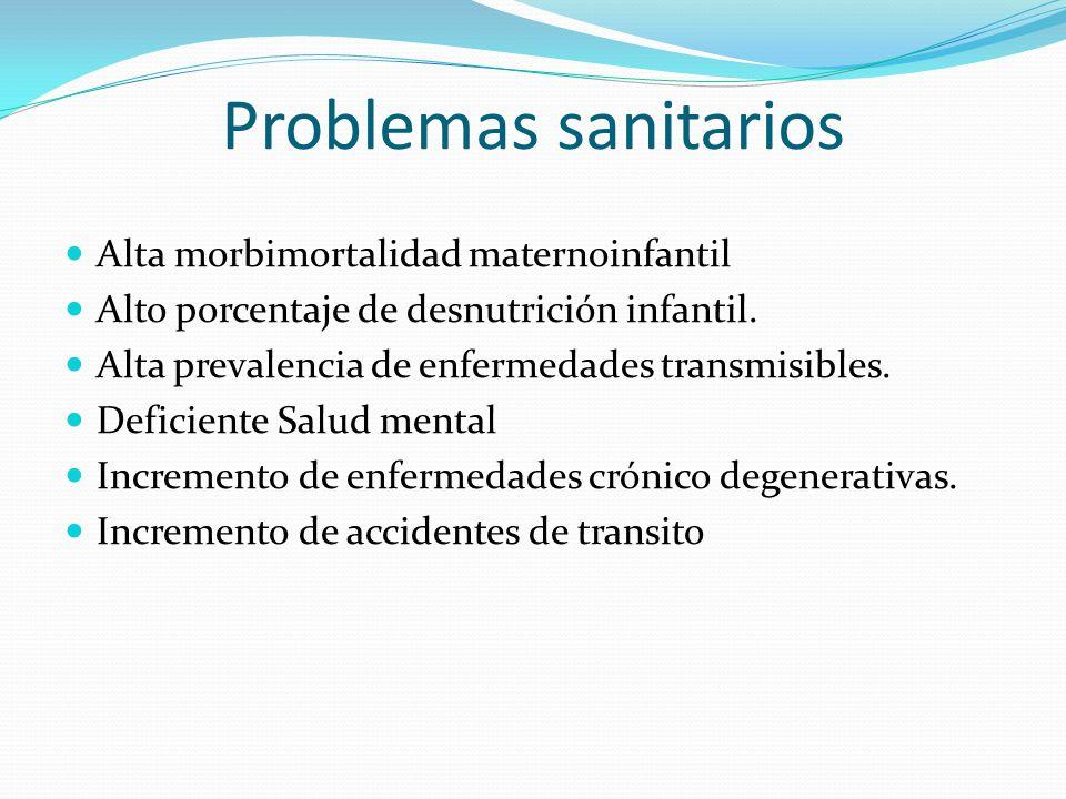 Problemas sanitarios Alta morbimortalidad maternoinfantil Alto porcentaje de desnutrición infantil. Alta prevalencia de enfermedades transmisibles. De