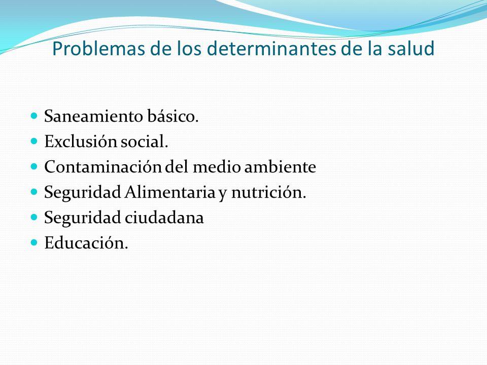 Problemas de los determinantes de la salud Saneamiento básico. Exclusión social. Contaminación del medio ambiente Seguridad Alimentaria y nutrición. S