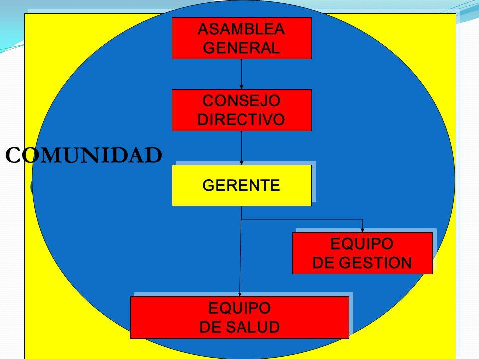 GERENTE ASAMBLEA GENERAL CONSEJO DIRECTIVO EQUIPO DE GESTION EQUIPO DE GESTION EQUIPO DE SALUD EQUIPO DE SALUD COMUNIDAD GERENTE