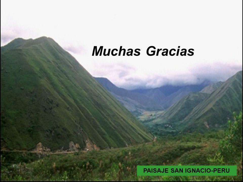 PAISAJE SAN IGNACIO PAISAJE SAN IGNACIO-PERU Muchas Gracias