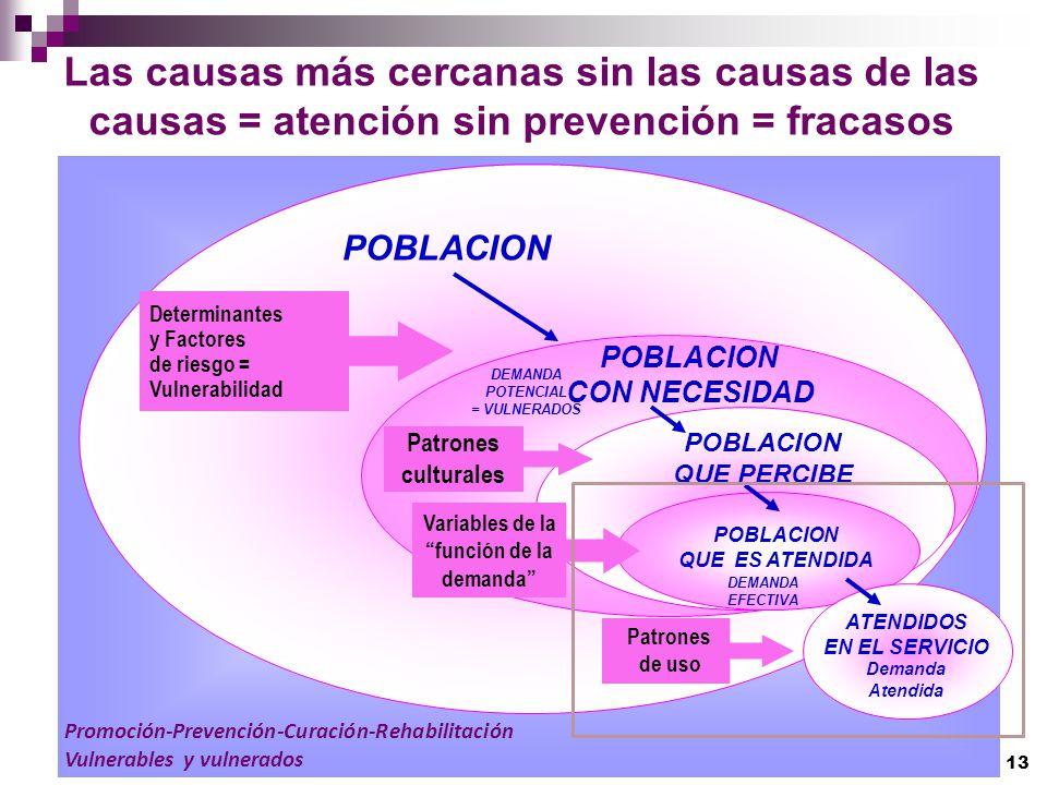 POBLACION CON NECESIDAD POBLACION QUE PERCIBE DEMANDA POTENCIAL = VULNERADOS POBLACION QUE ES ATENDIDA DEMANDA EFECTIVA Determinantes y Factores de ri