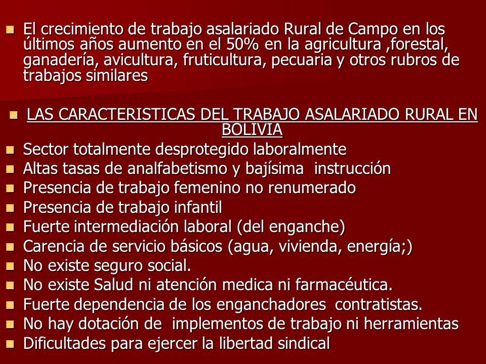 El crecimiento de trabajo asalariado Rural de Campo en los últimos años aumento en el 50% en la agricultura,forestal, ganadería, avicultura, fruticult