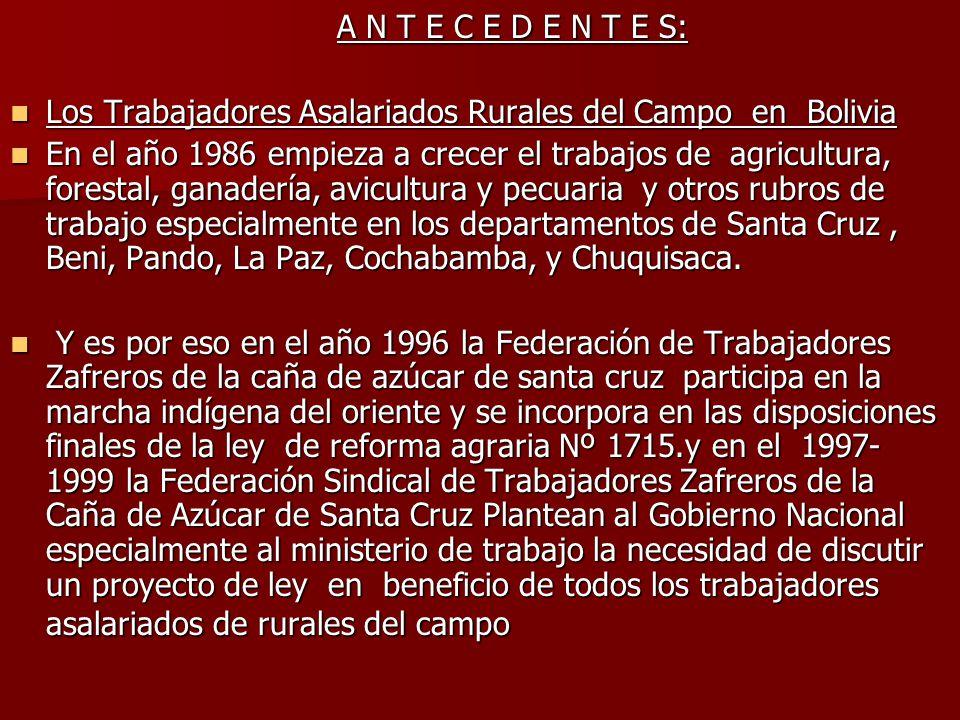 A N T E C E D E N T E S: A N T E C E D E N T E S: Los Trabajadores Asalariados Rurales del Campo en Bolivia Los Trabajadores Asalariados Rurales del C