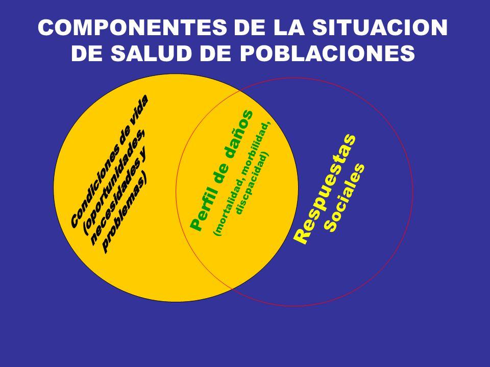 COMPONENTES DE LA SITUACION DE SALUD DE POBLACIONES Respuestas Sociales Perfil de daños (mortalidad, morbilidad, discpacidad)