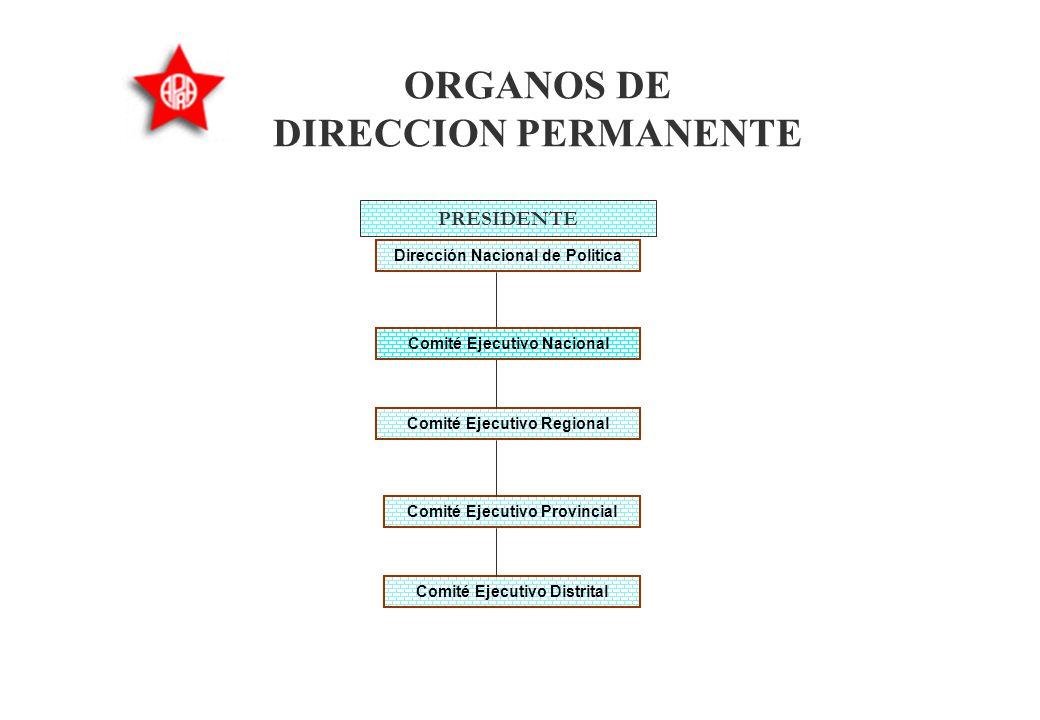 ORGANOS DE DIRECCION PERMANENTE §Son órganos de conducción permanente: »La Presidencia del Partido, seguida del Comité Ejecutivo Nacional, la Direcció