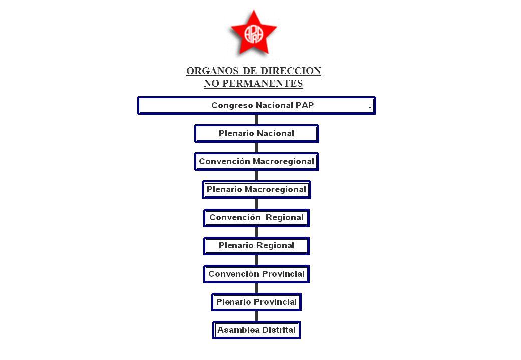 ORGANOS DE DIRECCION NO PERMANENTES