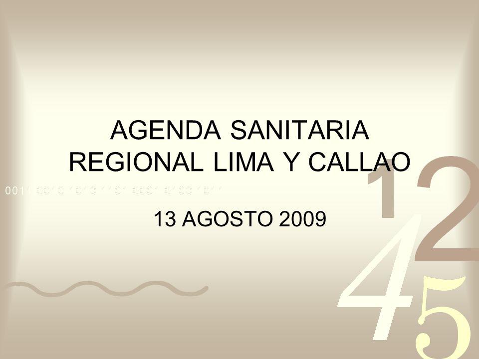 AGENDA SANITARIA REGIONAL LIMA Y CALLAO 13 AGOSTO 2009