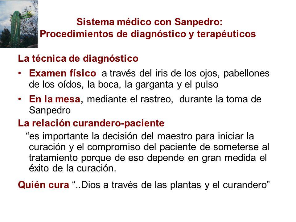 Sistema médico con Sanpedro: Procedimientos de diagnóstico y terapéuticos La técnica de diagnóstico Examen físico a través del iris de los ojos, pabel