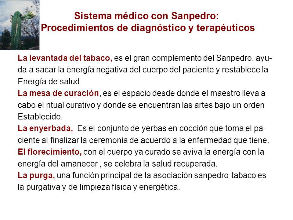 La levantada del tabaco, es el gran complemento del Sanpedro, ayu- da a sacar la energía negativa del cuerpo del paciente y restablece la Energía de salud.
