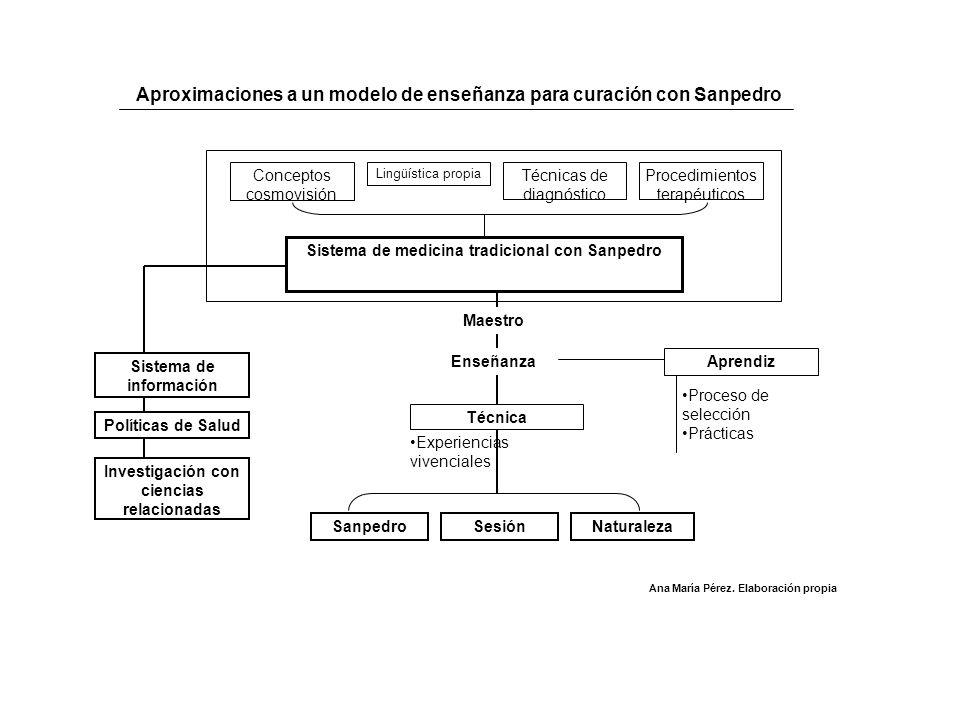Sistema de medicina tradicional con Sanpedro Conceptos cosmovisión Procedimientos terapéuticos Lingüística propia Técnicas de diagnóstico Maestro Ense