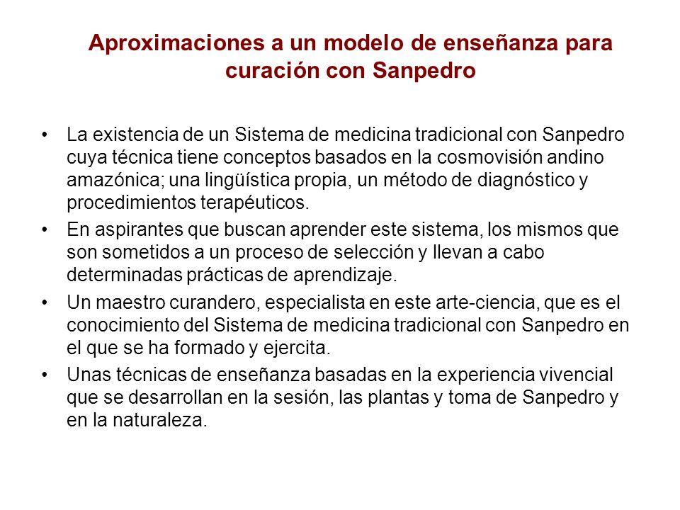 La existencia de un Sistema de medicina tradicional con Sanpedro cuya técnica tiene conceptos basados en la cosmovisión andino amazónica; una lingüíst