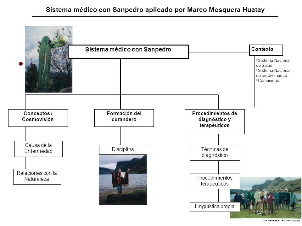 Sistema médico con Sanpedro: Conceptos Cosmovisión andino- amazónica.