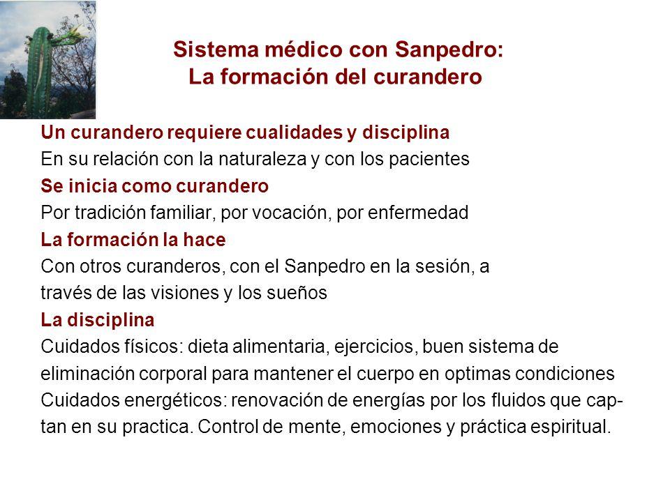 Sistema médico con Sanpedro: La formación del curandero Un curandero requiere cualidades y disciplina En su relación con la naturaleza y con los pacie