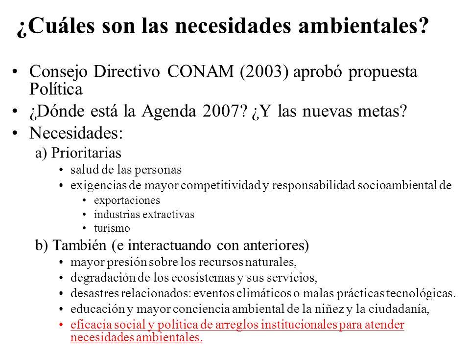 ¿Cuáles son las necesidades ambientales? Consejo Directivo CONAM (2003) aprobó propuesta Política ¿Dónde está la Agenda 2007? ¿Y las nuevas metas? Nec