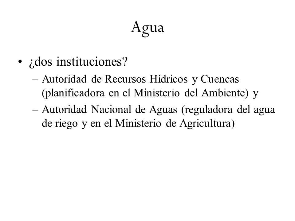 Agua ¿dos instituciones? –Autoridad de Recursos Hídricos y Cuencas (planificadora en el Ministerio del Ambiente) y –Autoridad Nacional de Aguas (regul