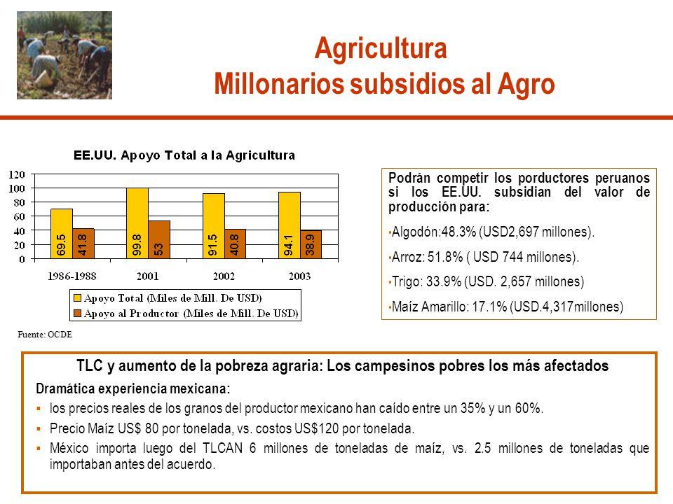Fuente: OCDE TLC y aumento de la pobreza agraria: Los campesinos pobres los más afectados Dramática experiencia mexicana: los precios reales de los gr