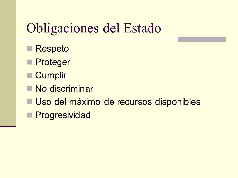 Obligaciones del Estado Respeto Proteger Cumplir No discriminar Uso del máximo de recursos disponibles Progresividad