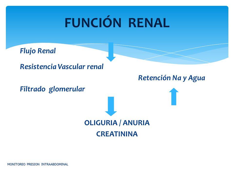 Flujo Renal Resistencia Vascular renal Retención Na y Agua Filtrado glomerular OLIGURIA / ANURIA CREATININA MONITOREO PRESION INTRAABDOMINAL FUNCIÓN R