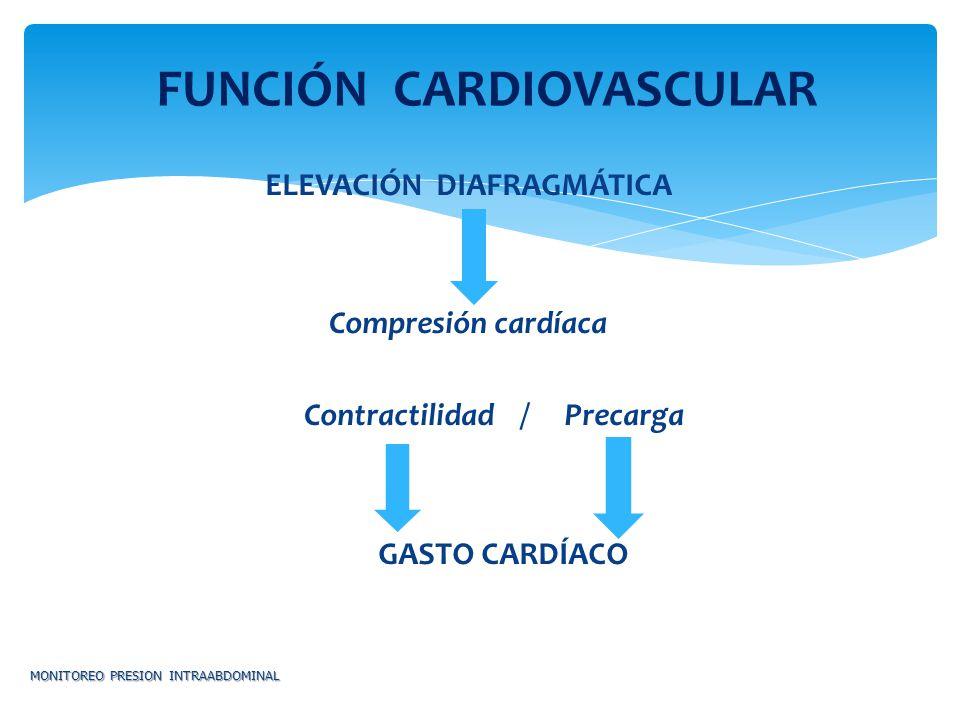Flujo Renal Resistencia Vascular renal Retención Na y Agua Filtrado glomerular OLIGURIA / ANURIA CREATININA MONITOREO PRESION INTRAABDOMINAL FUNCIÓN RENAL
