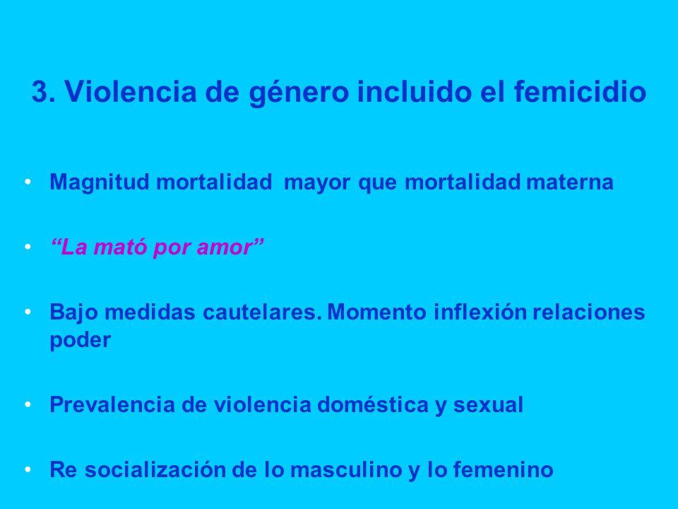 3. Violencia de género incluido el femicidio Magnitud mortalidad mayor que mortalidad materna La mató por amor Bajo medidas cautelares. Momento inflex