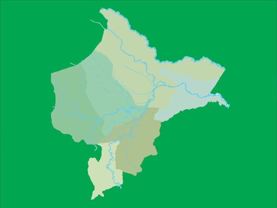Concesiones: En la actualidad, la producción de Hidrocarburos proviene De la Amazonía entre Un 72% y 82% Respectivamente.