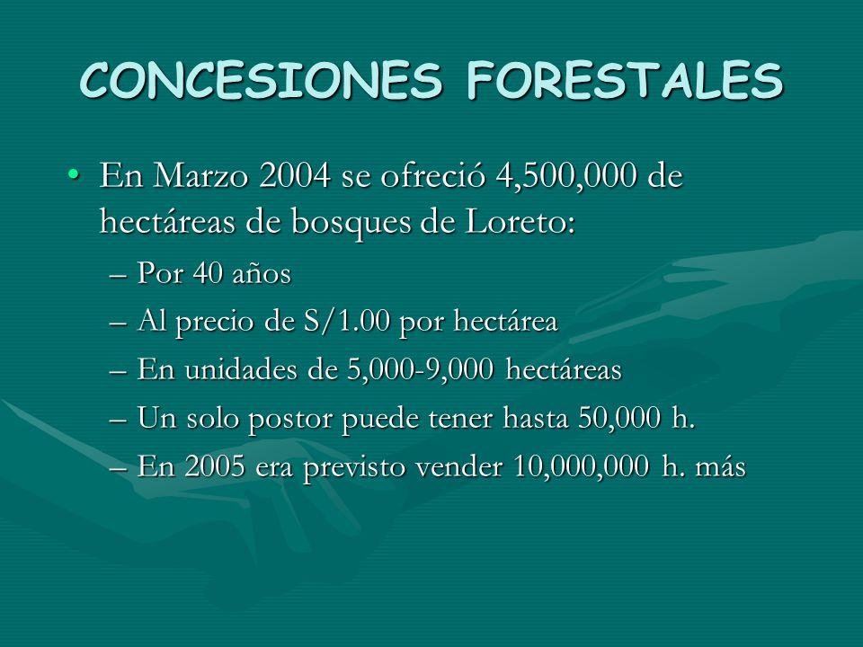 CONCESIONES FORESTALES En Marzo 2004 se ofreció 4,500,000 de hectáreas de bosques de Loreto:En Marzo 2004 se ofreció 4,500,000 de hectáreas de bosques