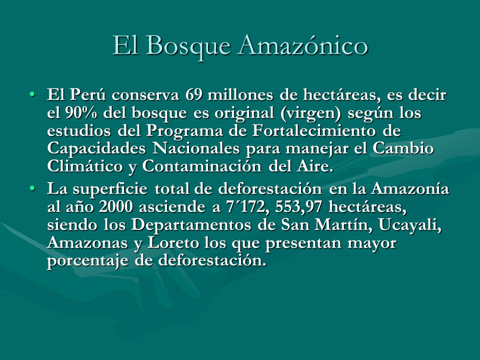 El Bosque Amazónico El Perú conserva 69 millones de hectáreas, es decir el 90% del bosque es original (virgen) según los estudios del Programa de Fort
