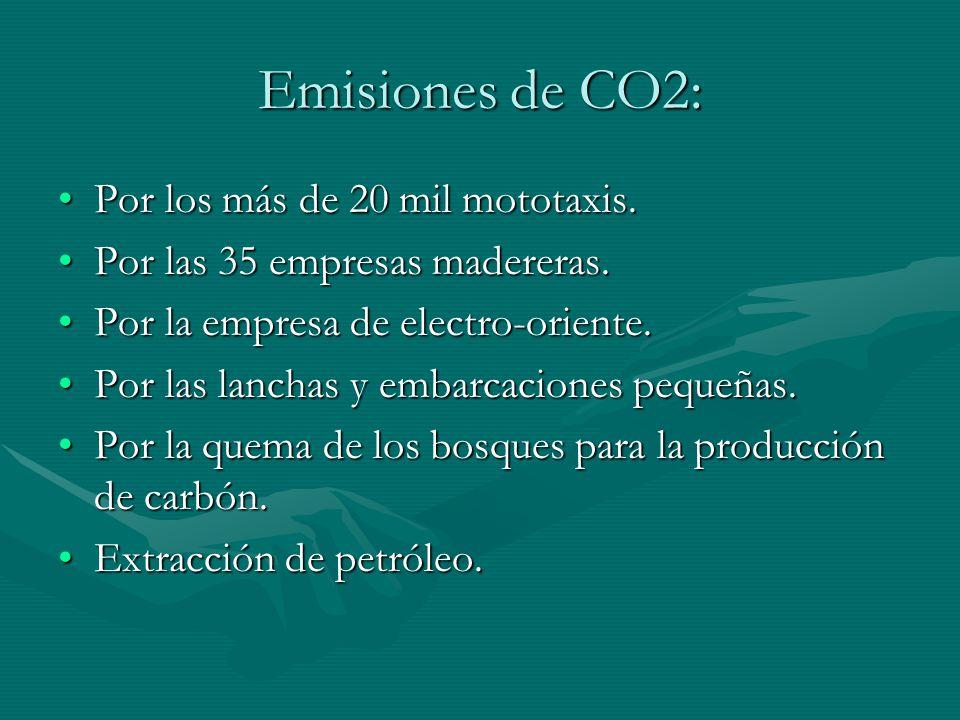 Emisiones de CO2: Por los más de 20 mil mototaxis.Por los más de 20 mil mototaxis. Por las 35 empresas madereras.Por las 35 empresas madereras. Por la