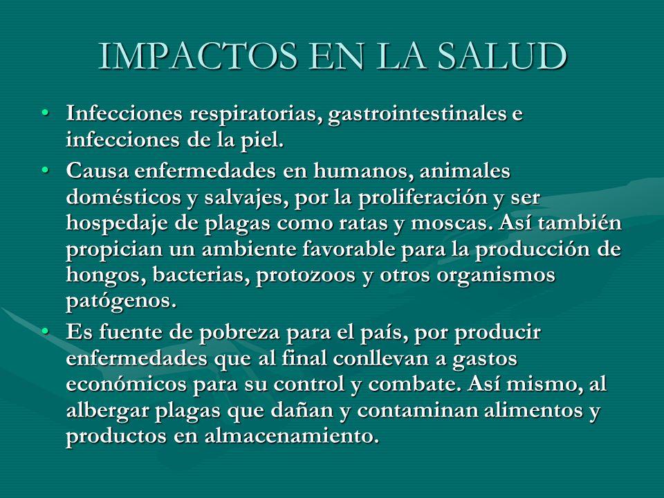 IMPACTOS EN LA SALUD Infecciones respiratorias, gastrointestinales e infecciones de la piel.Infecciones respiratorias, gastrointestinales e infeccione