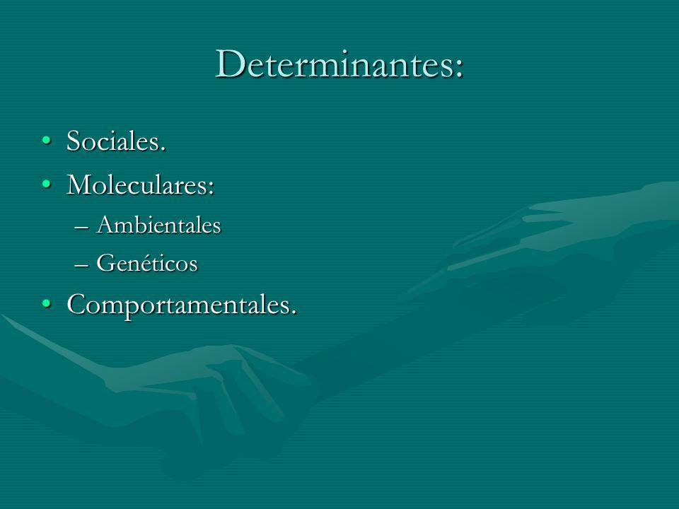 Compromisos políticos en el Acta de DORISA: 1.Denominación y Objeto del acta.