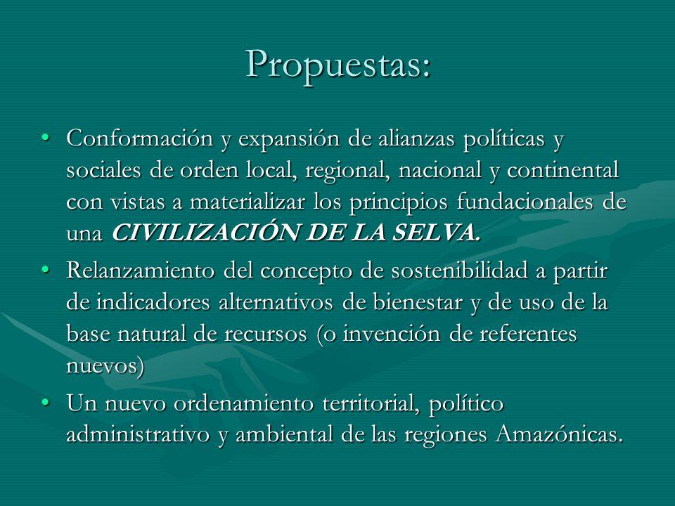 Propuestas: Conformación y expansión de alianzas políticas y sociales de orden local, regional, nacional y continental con vistas a materializar los p
