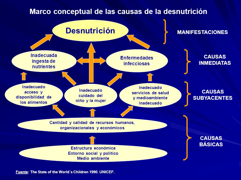 Desnutrición Inadecuada ingesta de nutrientes Enfermedades infecciosas Inadecuado acceso y disponibilidad de los alimentos Inadecuado cuidado del niño