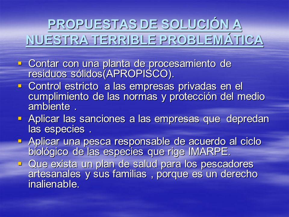 PROPUESTAS DE SOLUCIÓN A NUESTRA TERRIBLE PROBLEMÁTICA Contar con una planta de procesamiento de residuos sólidos(APROPISCO). Contar con una planta de