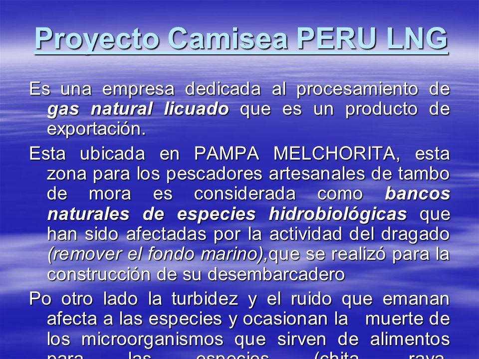 Proyecto Camisea PERU LNG Es una empresa dedicada al procesamiento de gas natural licuado que es un producto de exportación. Esta ubicada en PAMPA MEL