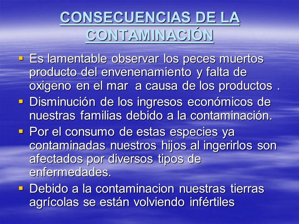 PROPUESTAS DE SOLUCIÓN A NUESTRA TERRIBLE PROBLEMÁTICA Contar con una planta de procesamiento de residuos sólidos(APROPISCO).