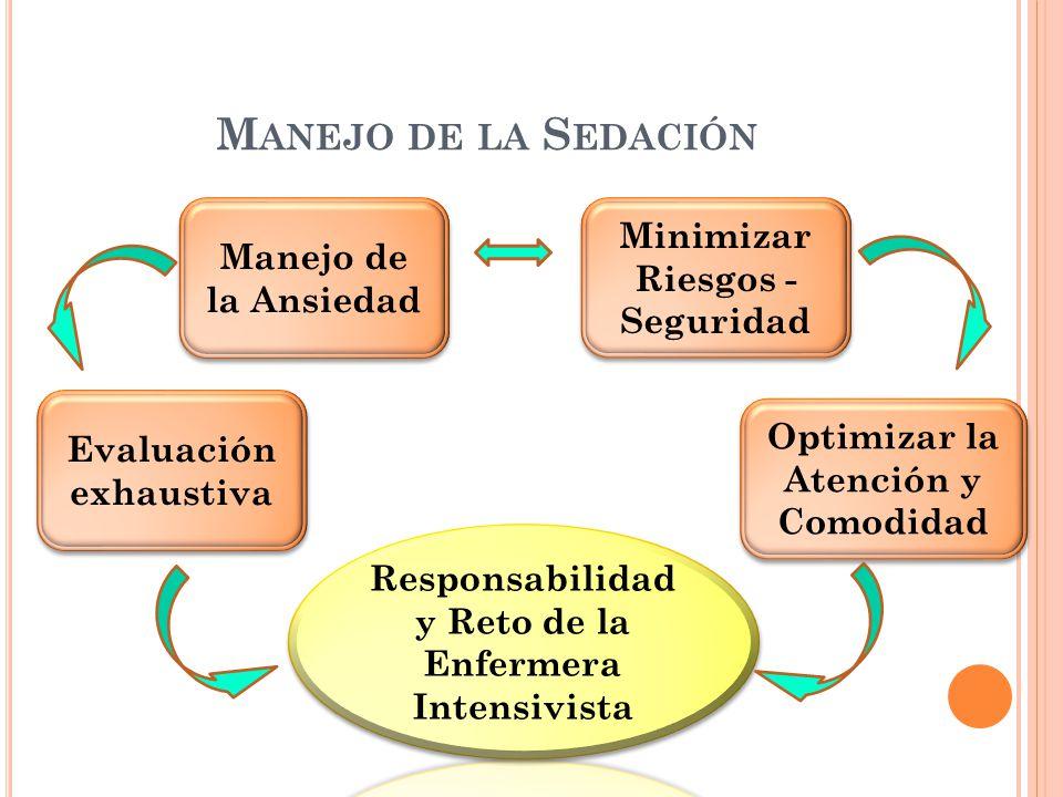 M ANEJO DE LA S EDACIÓN Evaluación exhaustiva Manejo de la Ansiedad Minimizar Riesgos - Seguridad Optimizar la Atención y Comodidad