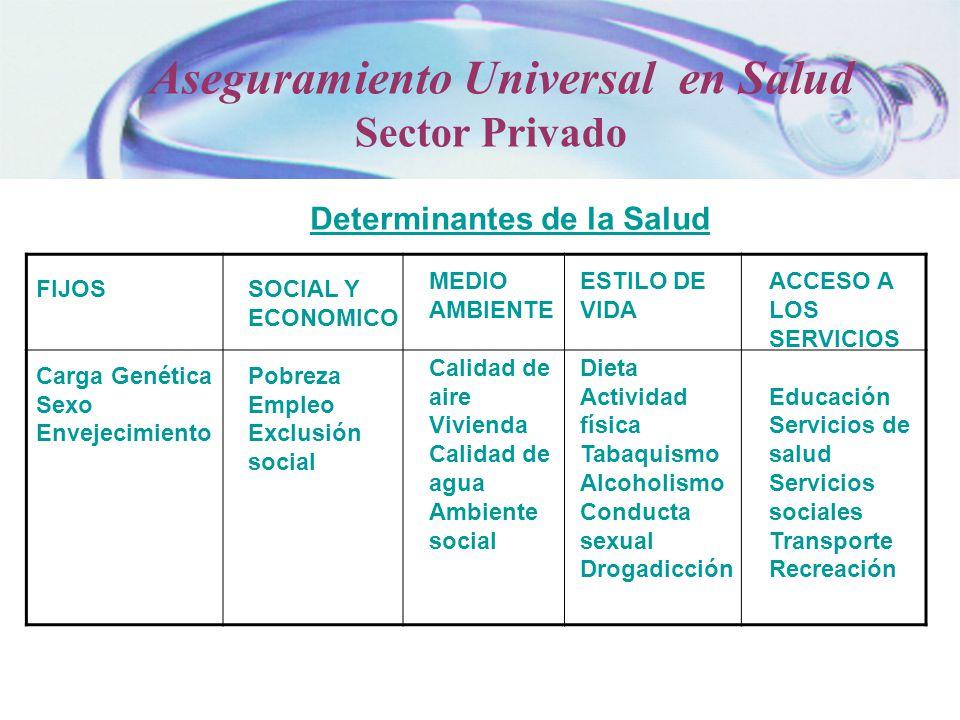 Determinantes de la Salud FIJOS Carga Genética Sexo Envejecimiento SOCIAL Y ECONOMICO Pobreza Empleo Exclusión social MEDIO AMBIENTE Calidad de aire V