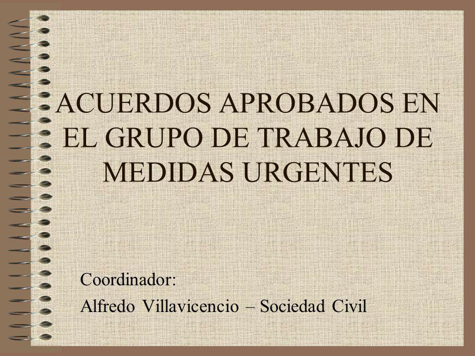 ACUERDOS APROBADOS EN EL GRUPO DE TRABAJO DE MEDIDAS URGENTES Coordinador: Alfredo Villavicencio – Sociedad Civil
