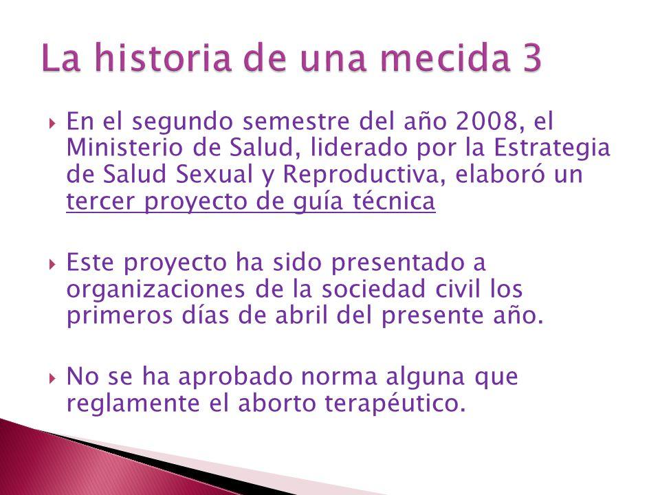 En el segundo semestre del año 2008, el Ministerio de Salud, liderado por la Estrategia de Salud Sexual y Reproductiva, elaboró un tercer proyecto de